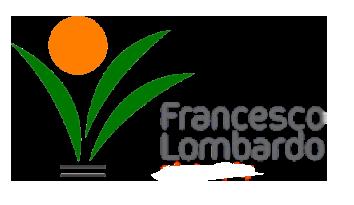 Francesco Lombardo -  P.IVA 15142171006